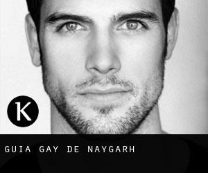Guía Gay de Nayāgarh