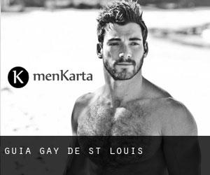 Guía Gay de St. Louis